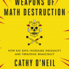 Cathy O'Neil - Weapons of Mathematics Destruction